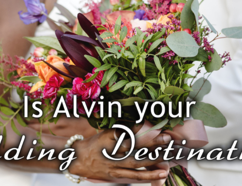 Is Alvin your Wedding Destination?
