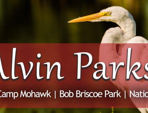 Alvin Parks